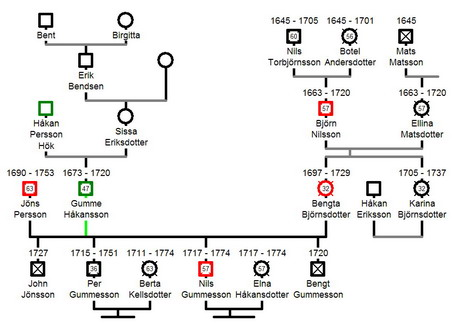 family genogram creator