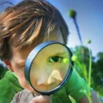 Child using magnifying glass to look at plant